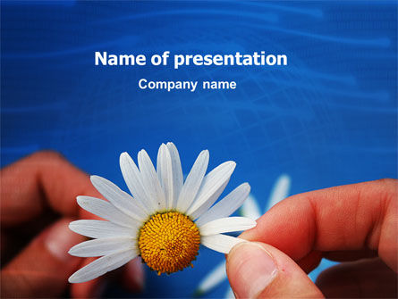 Camomile PowerPoint Template, 02382, Holiday/Special Occasion — PoweredTemplate.com