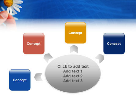 Camomile PowerPoint Template Slide 7