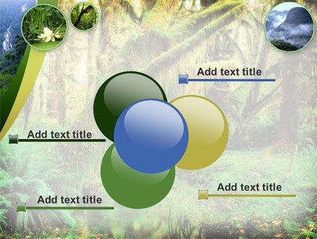Rainforest PowerPoint Template Slide 10