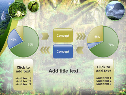 Rainforest PowerPoint Template Slide 11