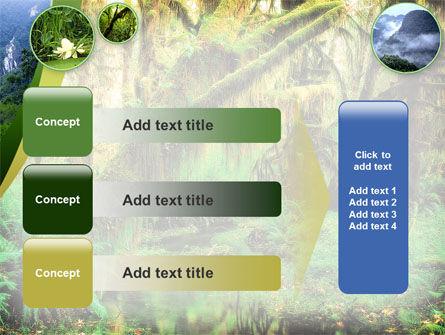 Rainforest PowerPoint Template Slide 12
