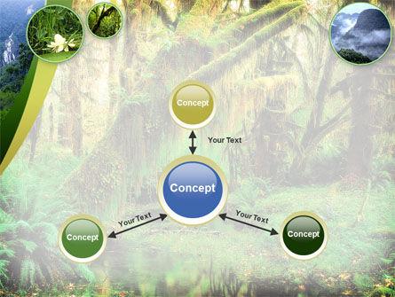 Rainforest PowerPoint Template Slide 14