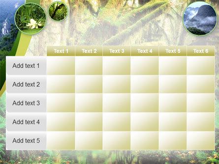 Rainforest PowerPoint Template Slide 15