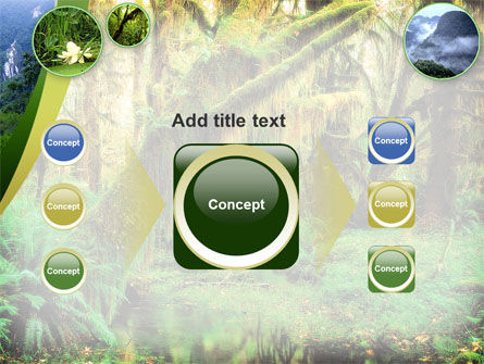 Rainforest PowerPoint Template Slide 17