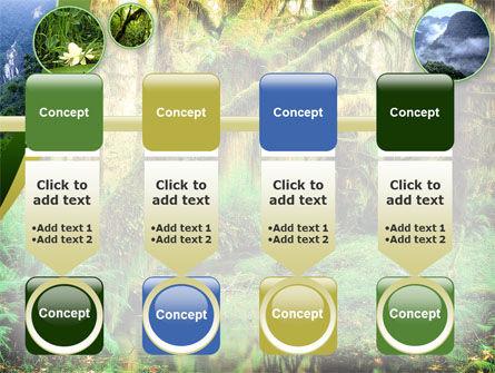 Rainforest PowerPoint Template Slide 18