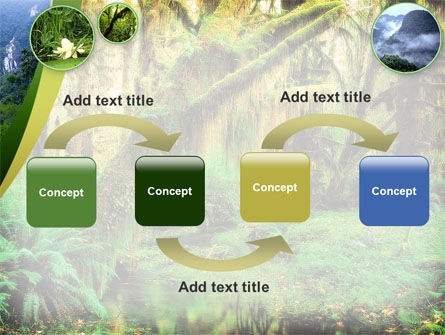 Rainforest PowerPoint Template Slide 4