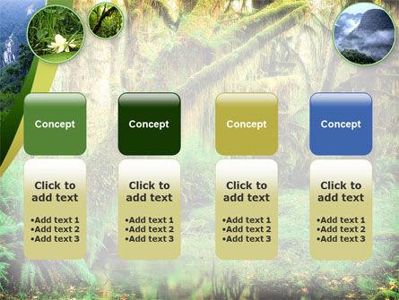 Rainforest PowerPoint Template Slide 5