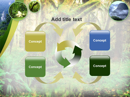 Rainforest PowerPoint Template Slide 6