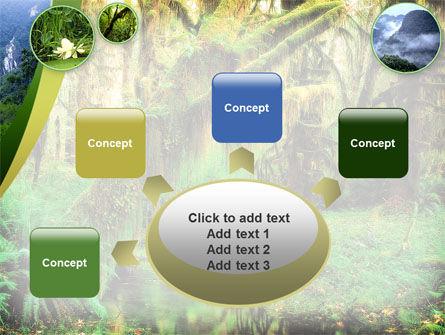 Rainforest PowerPoint Template Slide 7