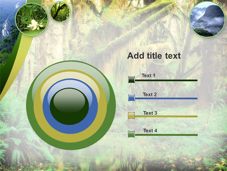 Rainforest PowerPoint Template Slide 9