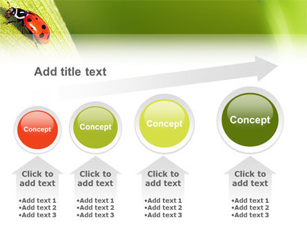 Lady-beetly PowerPoint Template Slide 13