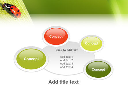 Lady-beetly PowerPoint Template Slide 16