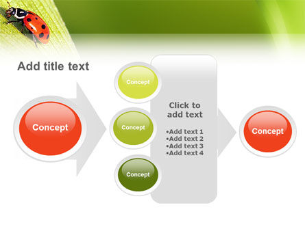 Lady-beetly PowerPoint Template Slide 17