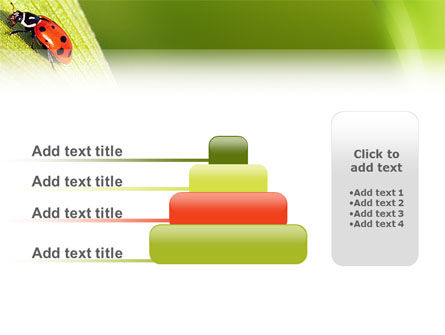 Lady-beetly PowerPoint Template Slide 8