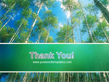 Forest PowerPoint Template Slide 20
