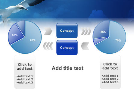 Albatross PowerPoint Template Slide 11