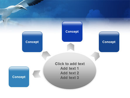 Albatross PowerPoint Template Slide 7