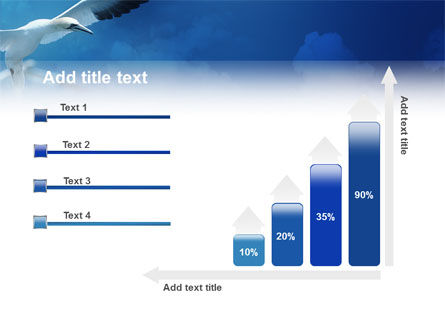 Albatross PowerPoint Template Slide 8