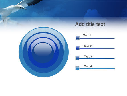 Albatross PowerPoint Template Slide 9