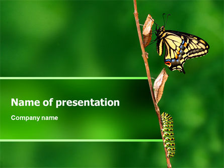 Butterfly And Caterpillar PowerPoint Template