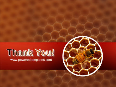 Bee PowerPoint Template Slide 20