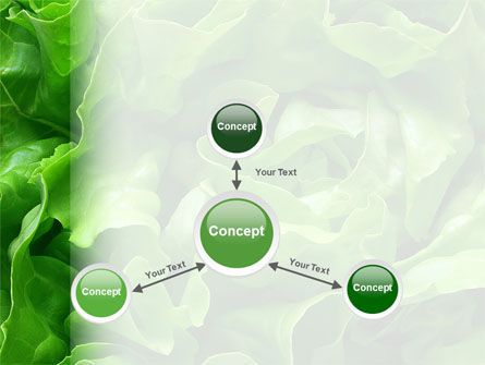 Lettuce PowerPoint Template Slide 14
