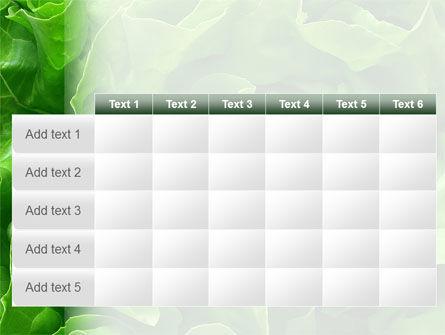 Lettuce PowerPoint Template Slide 15