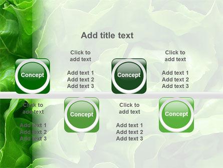 Lettuce PowerPoint Template Slide 19