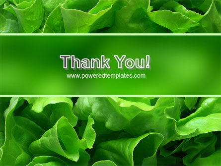 Lettuce PowerPoint Template Slide 20