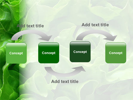 Lettuce PowerPoint Template, Slide 4, 02484, Food & Beverage — PoweredTemplate.com