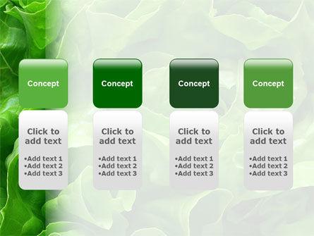 Lettuce PowerPoint Template Slide 5