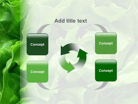 Lettuce PowerPoint Template Slide 6