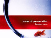 Nature & Environment: 红鱼PowerPoint模板 #02488