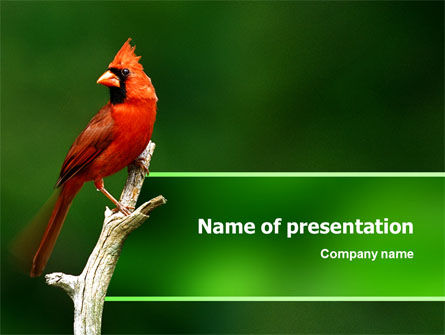 Animals and Pets: Cardinal Indiana State Vogel PowerPoint Template #02503