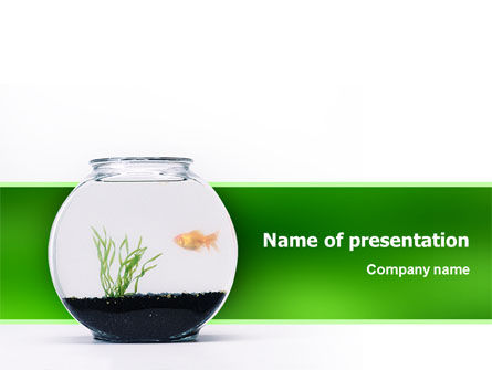 Animals and Pets: Aquarium Fish PowerPoint Template #02508