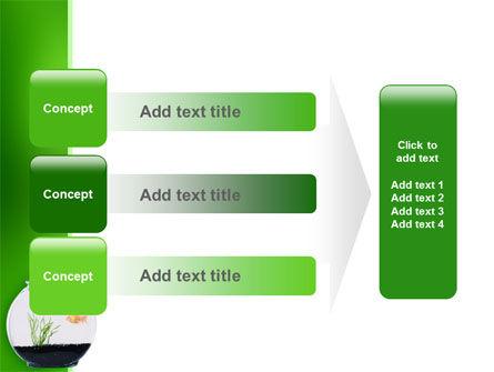 Aquarium Fish PowerPoint Template Slide 12