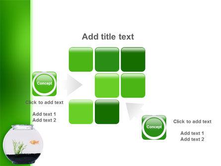 Aquarium Fish PowerPoint Template Slide 16