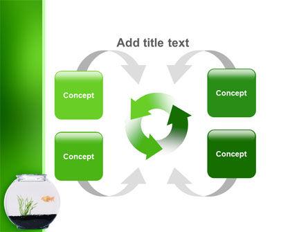 Aquarium Fish PowerPoint Template Slide 6