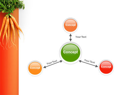 Carrot PowerPoint Template Slide 14