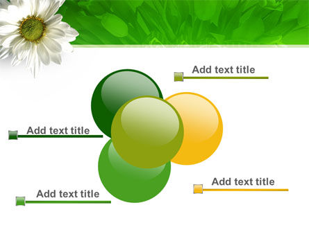 Ox-eye Daisy PowerPoint Template Slide 10