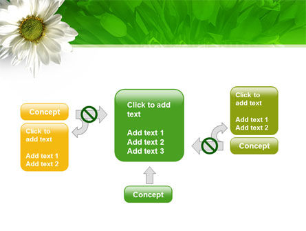 Ox-eye Daisy PowerPoint Template Slide 13