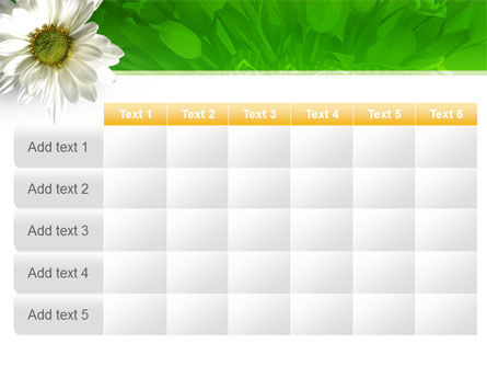Ox-eye Daisy PowerPoint Template Slide 15