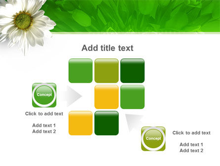 Ox-eye Daisy PowerPoint Template Slide 16