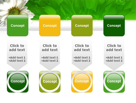 Ox-eye Daisy PowerPoint Template Slide 18