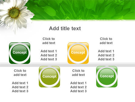 Ox-eye Daisy PowerPoint Template Slide 19
