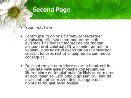 Ox-eye Daisy PowerPoint Template Slide 2