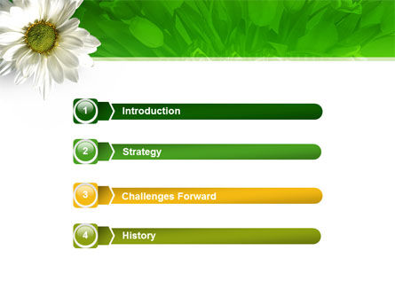 Ox-eye Daisy PowerPoint Template Slide 3
