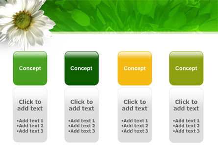 Ox-eye Daisy PowerPoint Template Slide 5