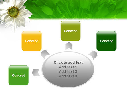 Ox-eye Daisy PowerPoint Template Slide 7
