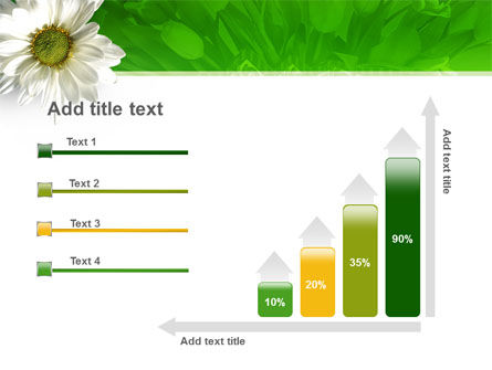 Ox-eye Daisy PowerPoint Template Slide 8
